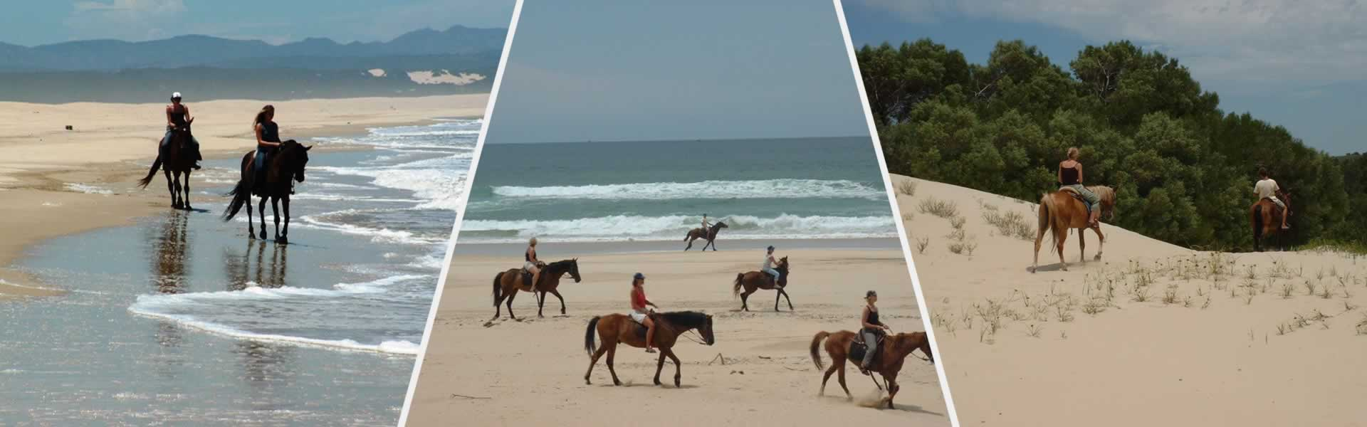 Horse Riding Jeffreys Bay